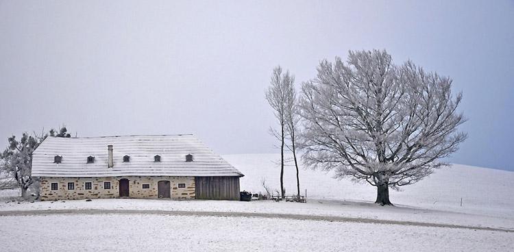 20090212110022_005 wintertime jan2009